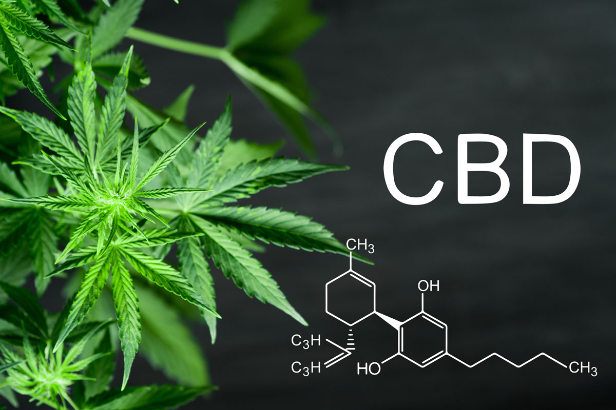 CBN chemical formula Beautiful background of green cannabis flow